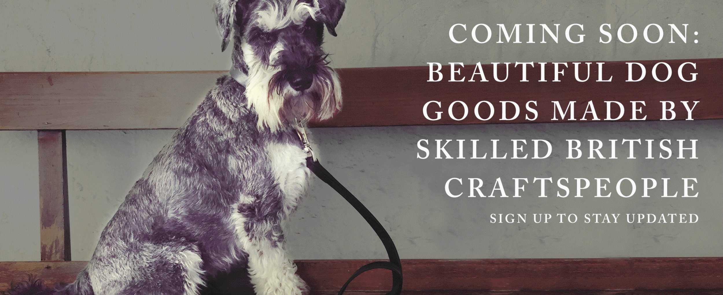 Coming soon beautiful dog goods made my skilled British craftspeople