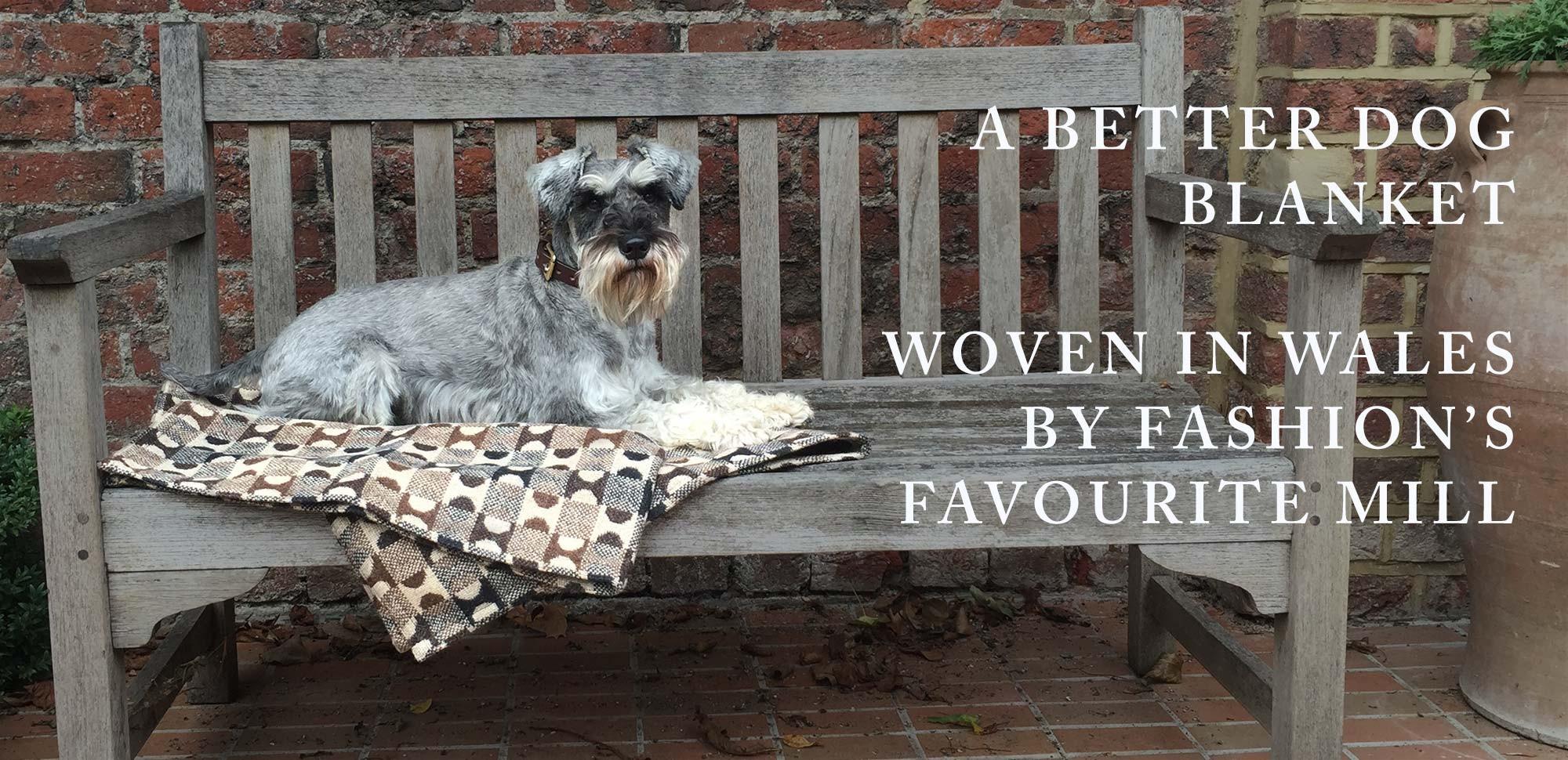 A better dog blanket