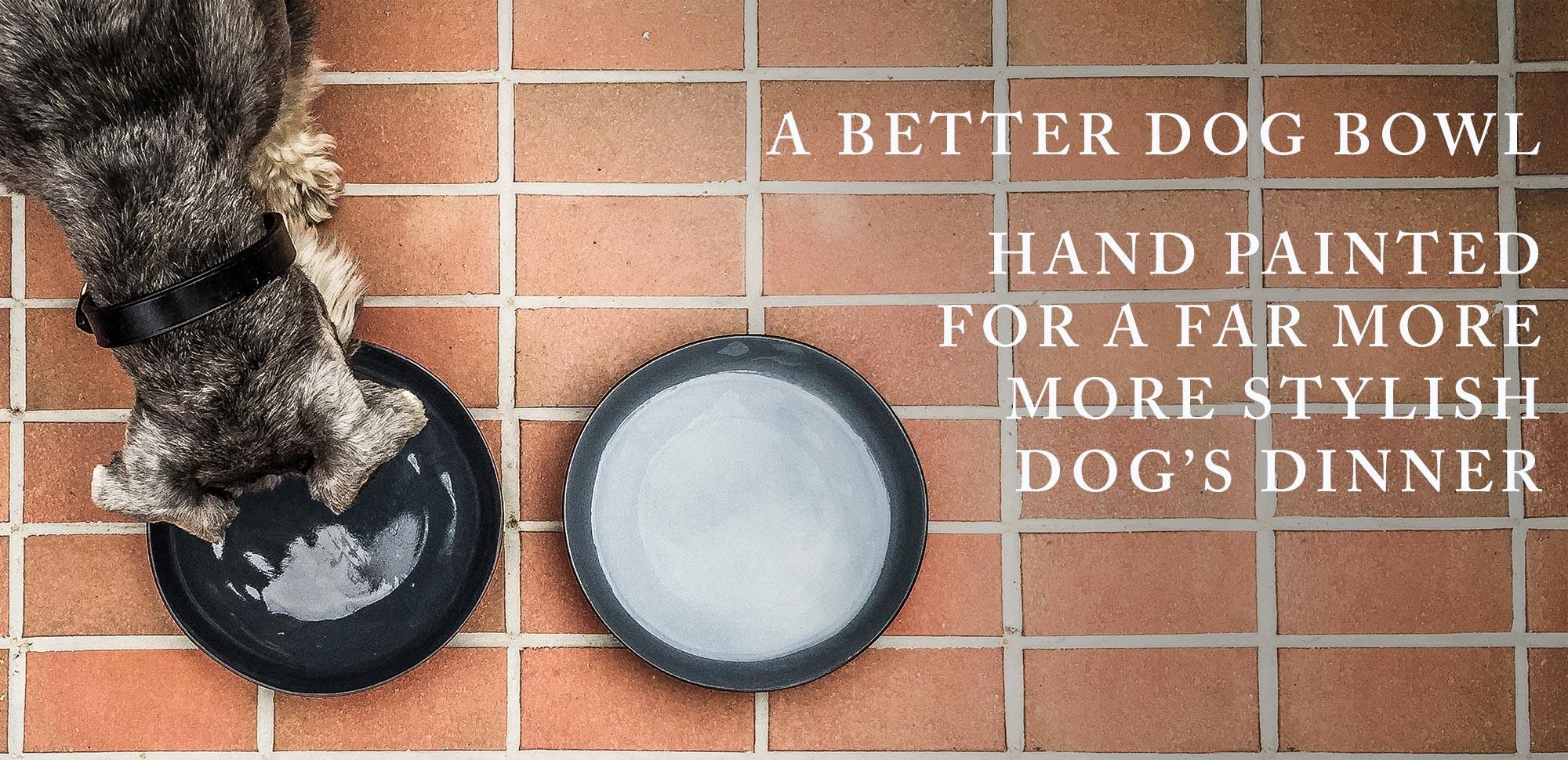 A better dog bowl